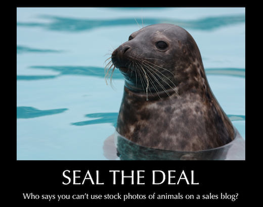 Seal The Deal Poster